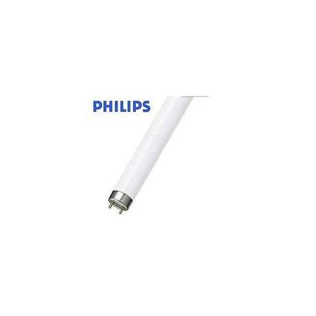 Tubo fluorescente master tl d super80 36w 865 luce bianca - Tubo fluorescente 36w ...