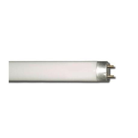 Tubo fluorescente t8 ecolight 36w 3000k luce calda attacco - Tubo fluorescente 36w ...